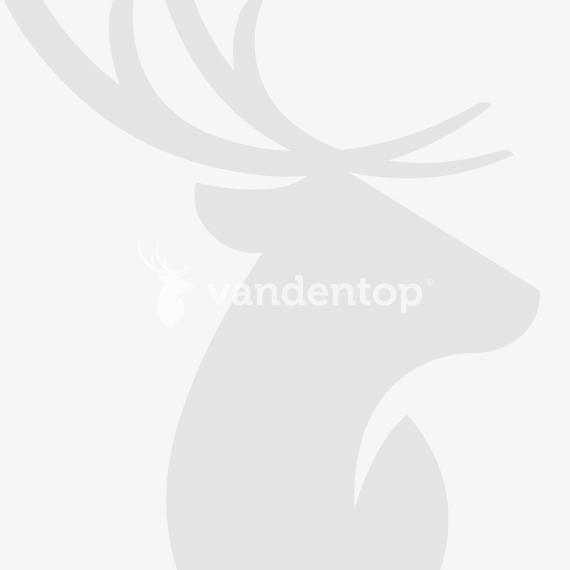 Douglas tuindeur met stalen frame fijnbezaagde douglas planken sfeer